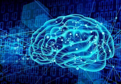 【倫理】脳を発達させる遺伝子をサルに注入してリアル『猿の軍団』を作成中 昆明動物学研究所