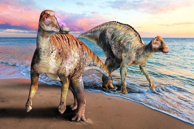 【恐竜】新種恐竜、その名は「ヤマトサウルス・イザナギイ」 発見地点は「日本誕生の地」